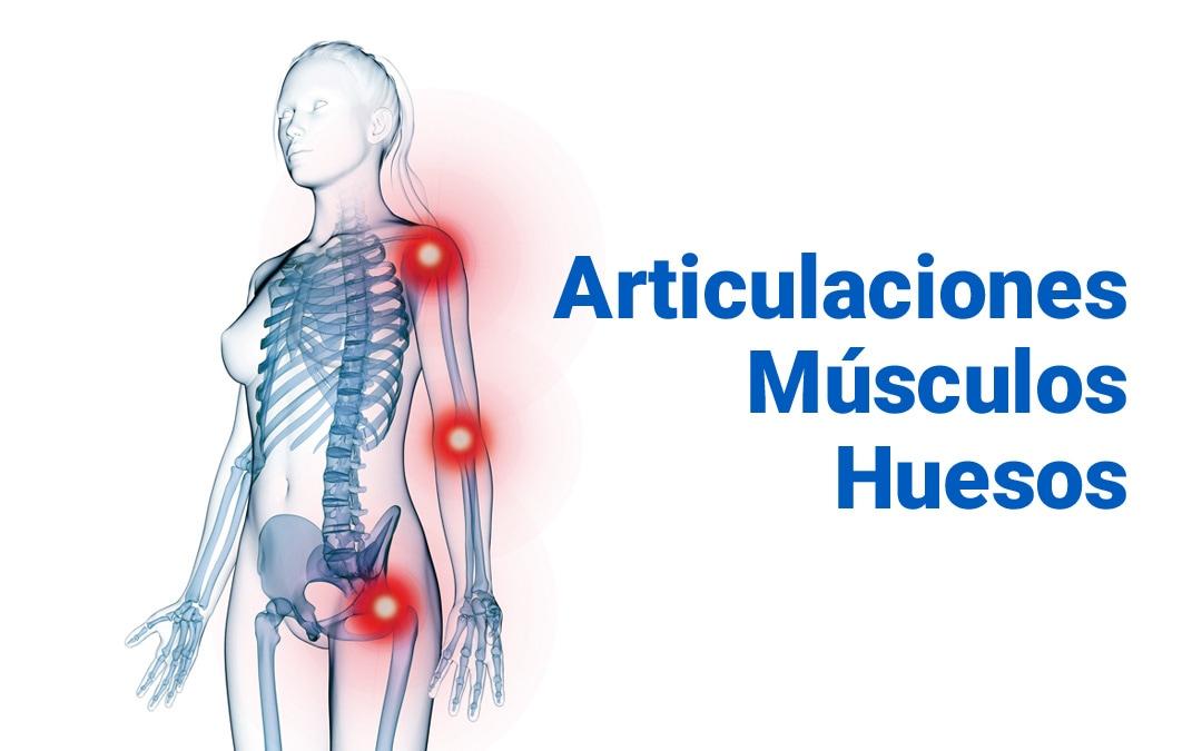 Un nuevo producto que nos puede ayudar a mantener la salud de huesos y músculos